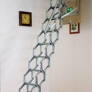 Special ladders